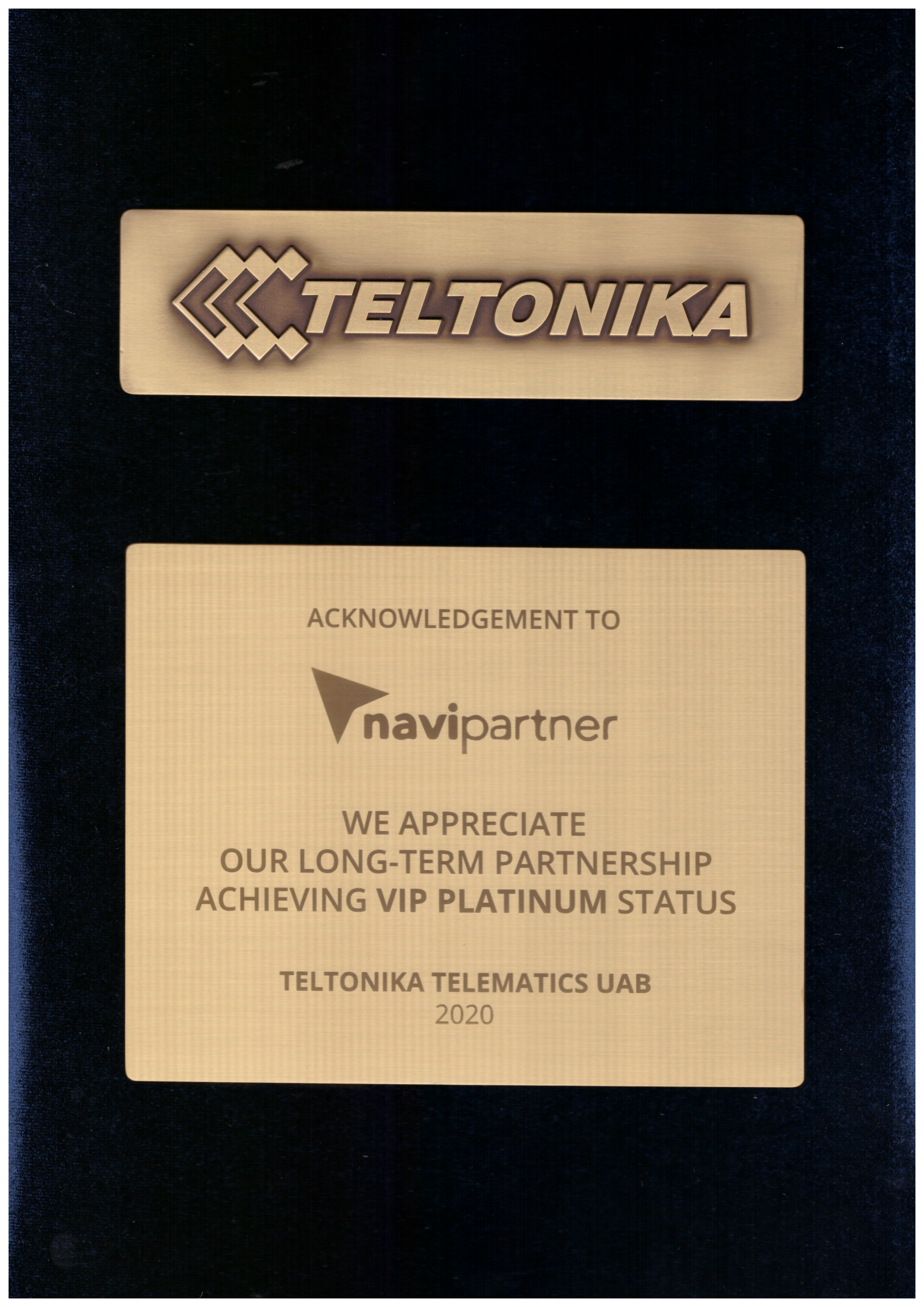 VIP PLATINUM PARTNER